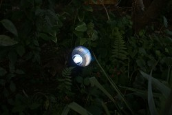 The existing garden lights are replaced with hand painted LED bulbs.